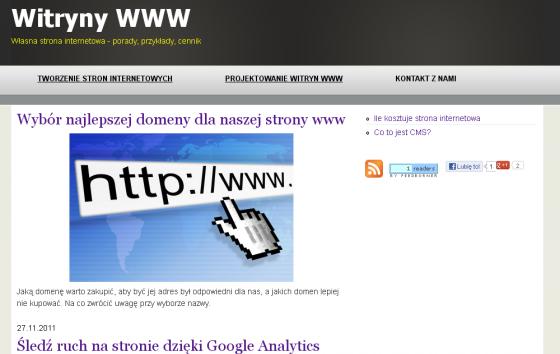 Nasze portfolio - Witryny www