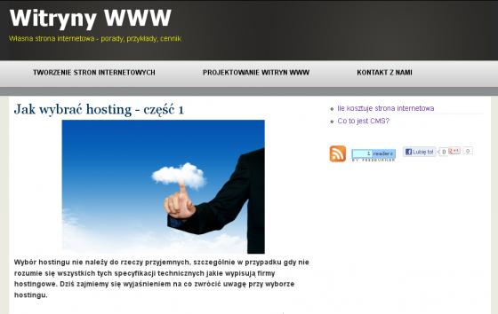 Witryny WWW - Własna strona internetowa